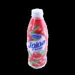 JNINA AU FRUIT FRAISE -- SOUMMAM -- 1KG